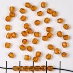 Tsjechisch facet rond 4 mm - donkerbruin topaaz