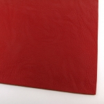 imitation leather - red smooth A4