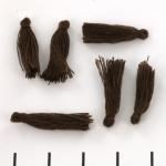 kwastje 19 mm - bruin