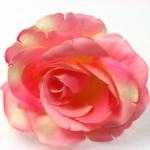 roos - roze en zachtgeel