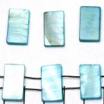 verdeler plat langwerpig schelp - turquoise