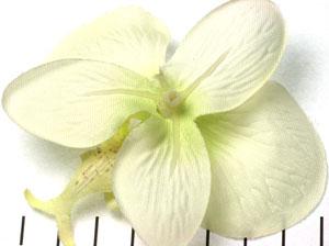 Extra foto's orchidee bloem - gebroken wit met rood